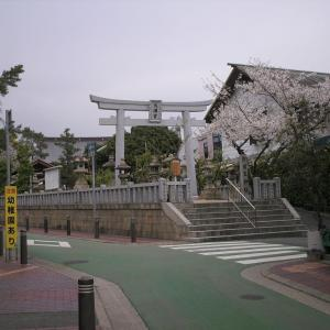 兵庫/芦屋① 芦屋市打出の桜