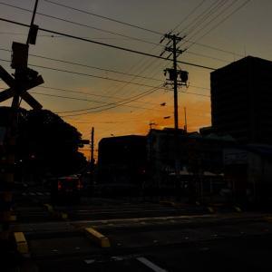 南加木屋駅に行ってきました