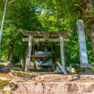 八幡神社(福井市大宮町)