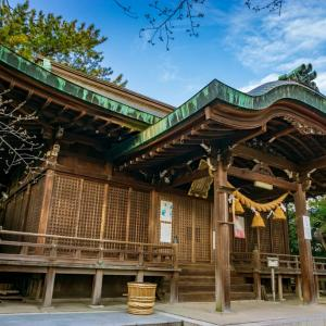 櫻井神社(安城市桜井町桜林)