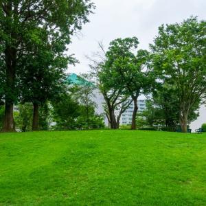 杉山神社〔旧地/中川町・吾妻山〕(横浜市都筑区中川中央)