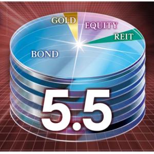 グローバル5.5倍バランスファンドの特徴とデメリット