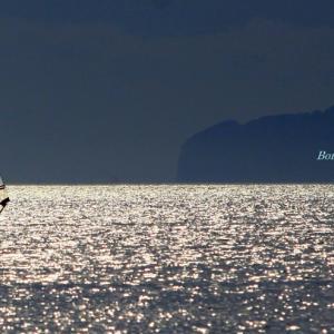 海面に夕陽がきらめいて