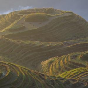 【桂林旅行2日目】棚田を見下ろす絶景トレッキング(2016年11月4日)