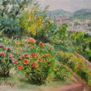 半田山植物園の風景