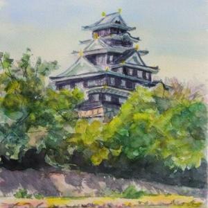 夏の岡山城