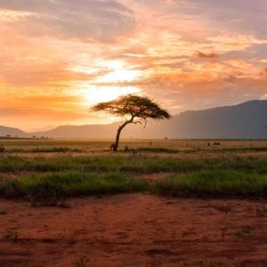 アフリカや後発開発途上国の問題点のまとめ【解決策はあるのか】