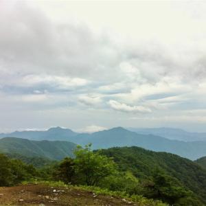 【鷹ノ巣山】2013年7月5日  恐怖! スズメバチの襲撃!(日帰り登山)