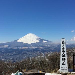 【金時山】2016年2月8日 地蔵堂から雪の北斜面。山頂は富士山と箱根の壮観な眺望《日帰り登山》