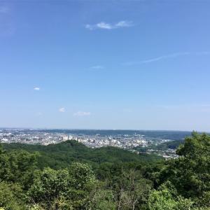 【天覧山〜多峯主山】2016年6月18日 二つ足しても500m未満! まったり登りつつも良い景色が見られます《日帰り登山》