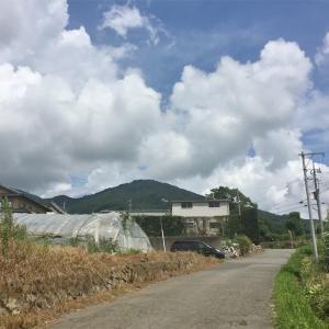 【加波山】2016年8月16日  あっついあっつい修行の山。神社巡りは涼しい時がおすすめです《日帰り登山》
