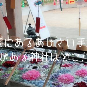 福岡県あじさいの手水舎がある【春日神社】期間はいつまで?【最新情報】