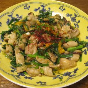 ◆牛ホルモン炒め/鯵のたたき/筍の土佐煮/野菜サラダ◆