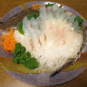 ◆コチのお造り/中華春巻き/タコわさ/野菜サラダ◆