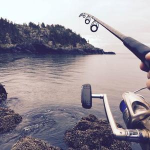 海釣りって楽しいの?バス釣りしか経験のない俺に、海釣りの楽しさを教えて!