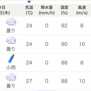 剣崎沖の梅雨イサキ、シケの早上がり