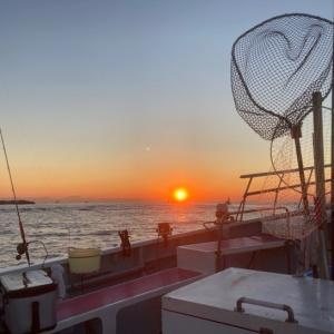 剣崎沖のコマセワラサ釣り