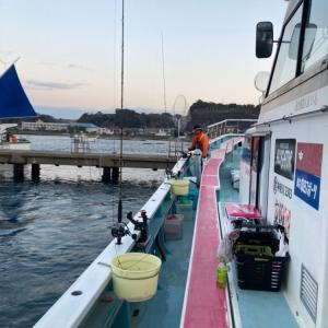 剣崎からコマセ寒真鯛釣り