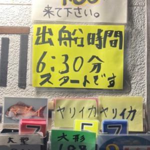 剣崎から、沖イカ釣り③