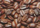 【コーヒー】コーヒーのあれこれ①