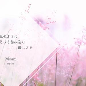 8月 ご提供中MENU