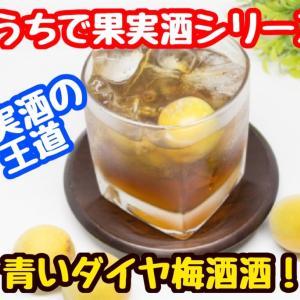 【レシピ】おうちで果実酒!王道の梅酒!