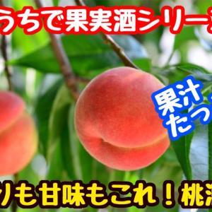 【レシピ】おうちで果実酒シリーズ!桃酒!