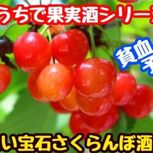 【レシピ】赤い宝石!さくらんぼ酒!