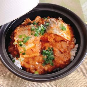 【レシピ】土鍋のキーマカレー!サバの味噌煮のっけ!