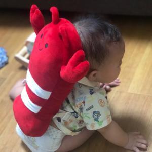 amazonのCMで話題!赤ちゃんのごっつん防止に背負うクッションを購入
