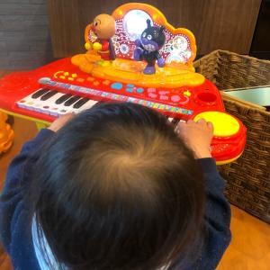 【楽器おもちゃ】ミュージックショーで遊んでみた感想