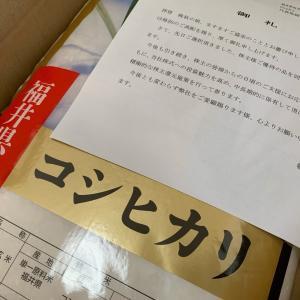 【株主優待】ゲンキー(9277)からカタログの選択品の『お米』が到着