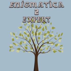 minecraft modpack【Enigmatica 2 Expert】.1