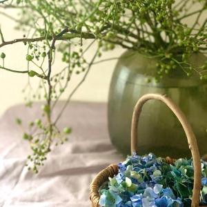 野ばらの実と秋色紫陽花