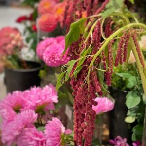 花を通して季節を感じる幸せ