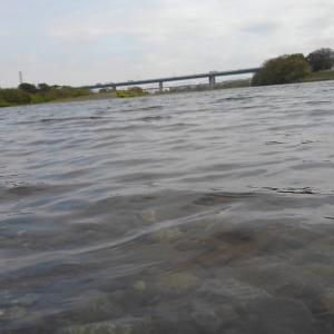 相模川に夢を求めて2