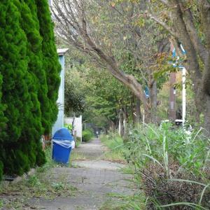 舞岡リサーチパークの何処にも繋がっていない謎の2車線道路(最終回)