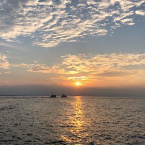 釣りグルメ 相模湾 2019 コマセ カツオ・マグロ #6