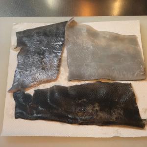 釣りグルメ 2020 相模湾 ルアーキャスティング キハダマグロ #2 皮料理