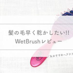 わたしのヘアケアルーティン|Wet Brushレビュー