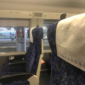 グリーン車に乗って大宮の氷川神社へ参拝