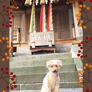 ⚫走水神社⛩️