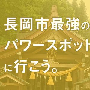 長岡の最強パワースポット「高龍神社」で心身健康と金運アップ