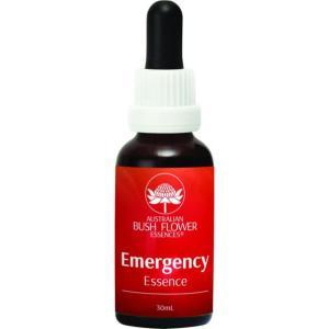 妊娠出産子育てにおすすめ!ABFE「Emergency 緊急」