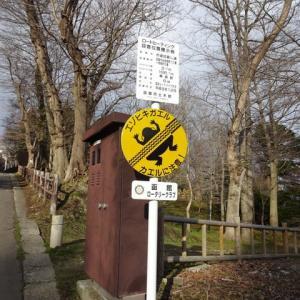 面白すぎるヒキガエルの標識