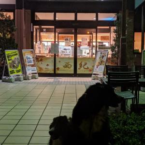 大型犬を連れて怒涛の14泊15日旅〜広島県→福井県〜
