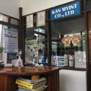 ヤンゴンで犬の狂犬病注射を受けてきた