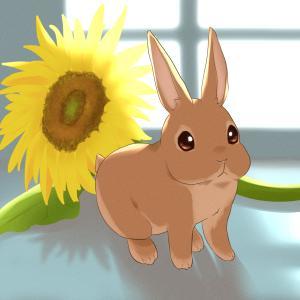 ウサギとひまわり