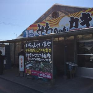 糸島でカキ満喫