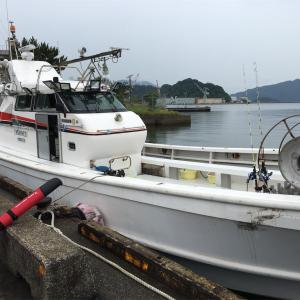 船釣り〜五目釣りからのケンサキイカ